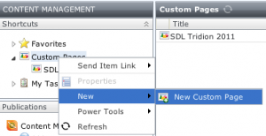 Opening the custom Page dialog